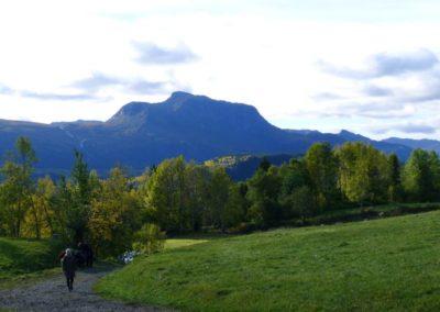 oppmerksomt nærvær i norsk natur