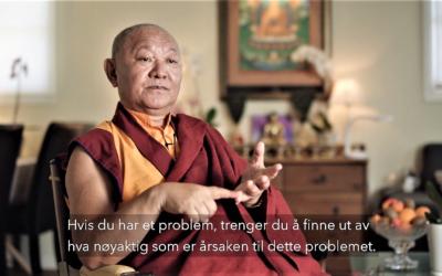 Film om buddhisme